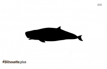 Killer Whale Silhouette Download