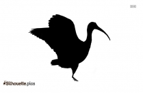 Black And White Crane Bird Silhouette