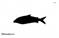 Whitefish Logo Silhouette For Download Image