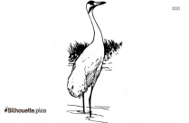 Whooping Crane Silhouette