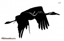 Whooping Crane Silhouette Background