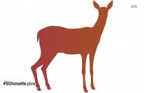 Baby Deer Sitting Silhouette