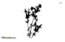 Black Rose Silhouette Image