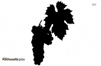 Grapes Tree Silhouette Background