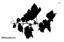 Wine Leaf Silhouette