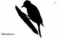 Bird Woodpecker Clipart Silhouette Image