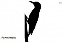 Sandpiper Clipart || Shore Birds Silhouette