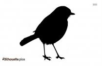 Kiwi Bird Silhouette