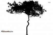 Pine Tree Silhouette Free