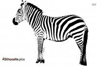 Zebra Silhouette Illustration