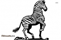 Zebra Line Drawing Silhouette