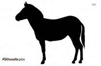 Zebra Side View Silhouette Image And Vector