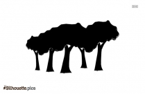 Oak Trees Silhouettes Art Images