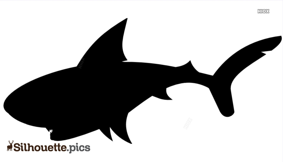 Tiger Shark Silhouette