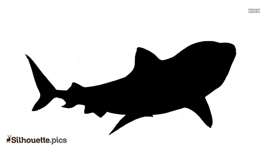 Tiger Shark Silhouette Vector