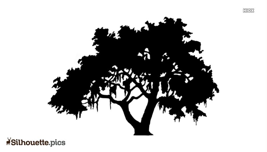 Tree Art Silhouette Icon