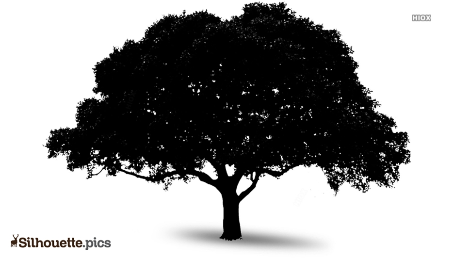 Tree Art Silhouette Vector
