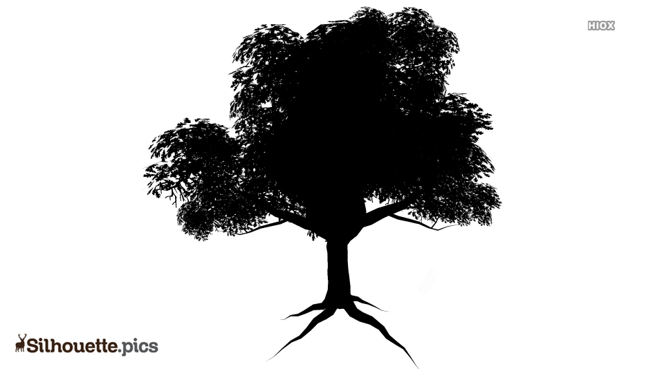Tree Texture Silhouette Illustration