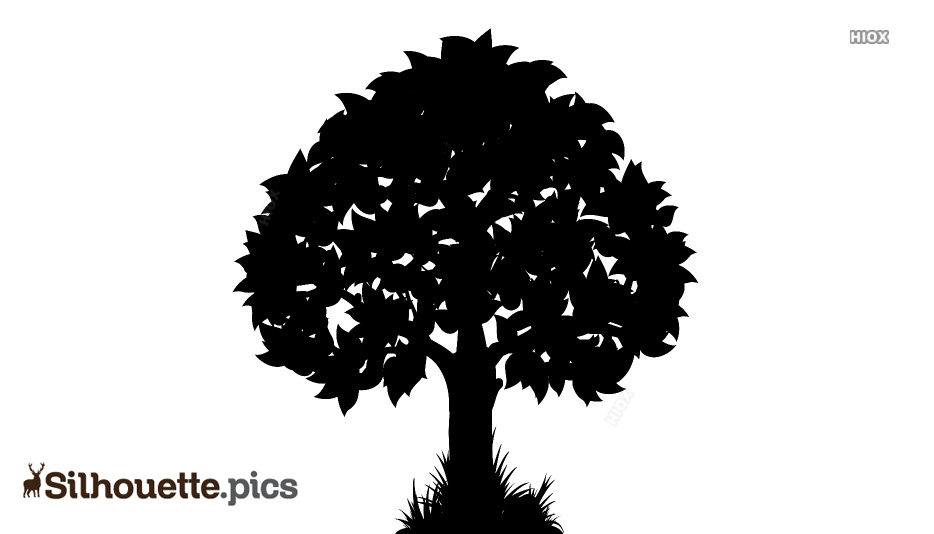 Tree With Leaves and Grass Silhouette