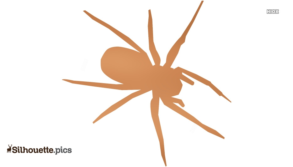 Tribal Spider Silhouette Image
