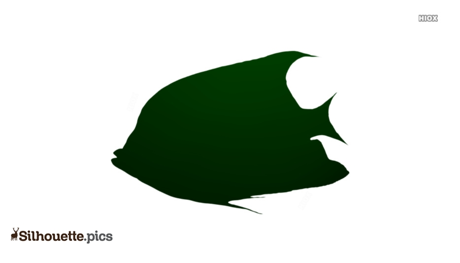 Tropical Fish Silhouette Icon