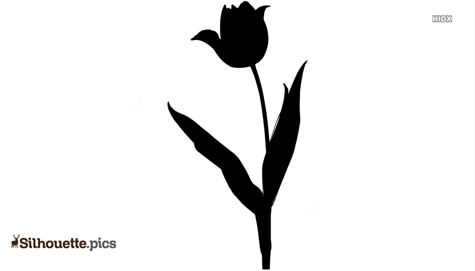 Tulip Flower Silhouette Vector And Clipart
