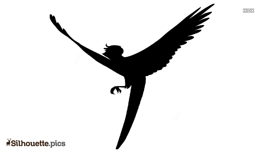 Turquoise Wings Silhouette Image And Vector