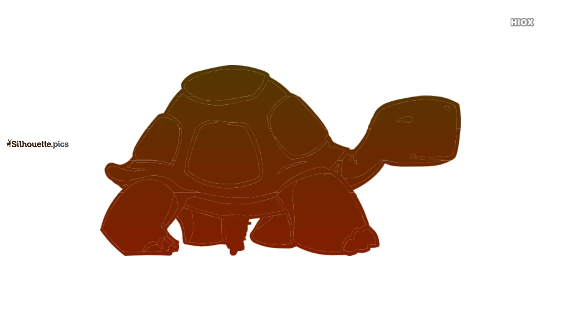 Cartoon Turtle Drawings Silhouette Images