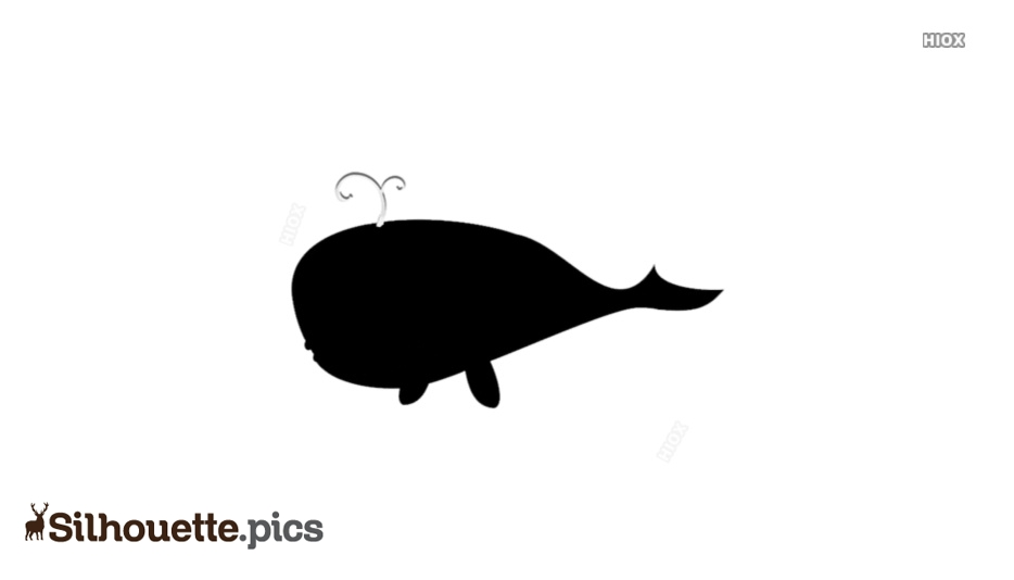 Whale Image Clipart Silhouette