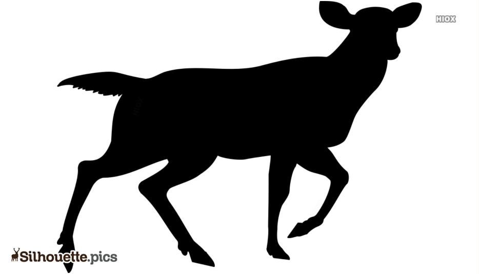 Deer Drawings Silhouette Images, Pics