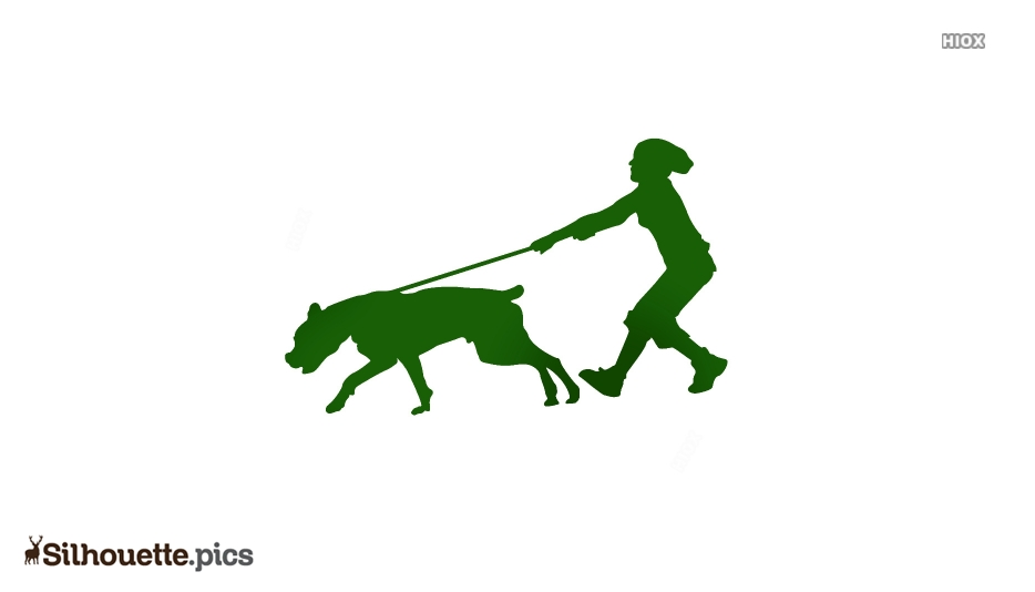 Woman Walking With Energetic Dog Silhouette